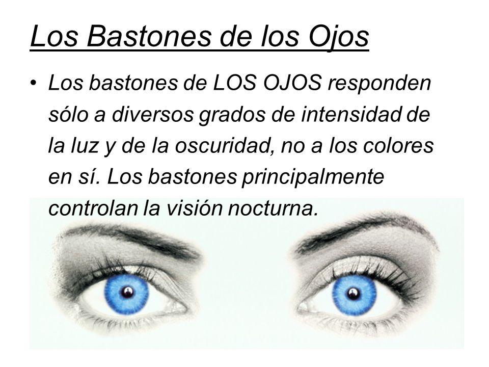 Los Bastones de los Ojos