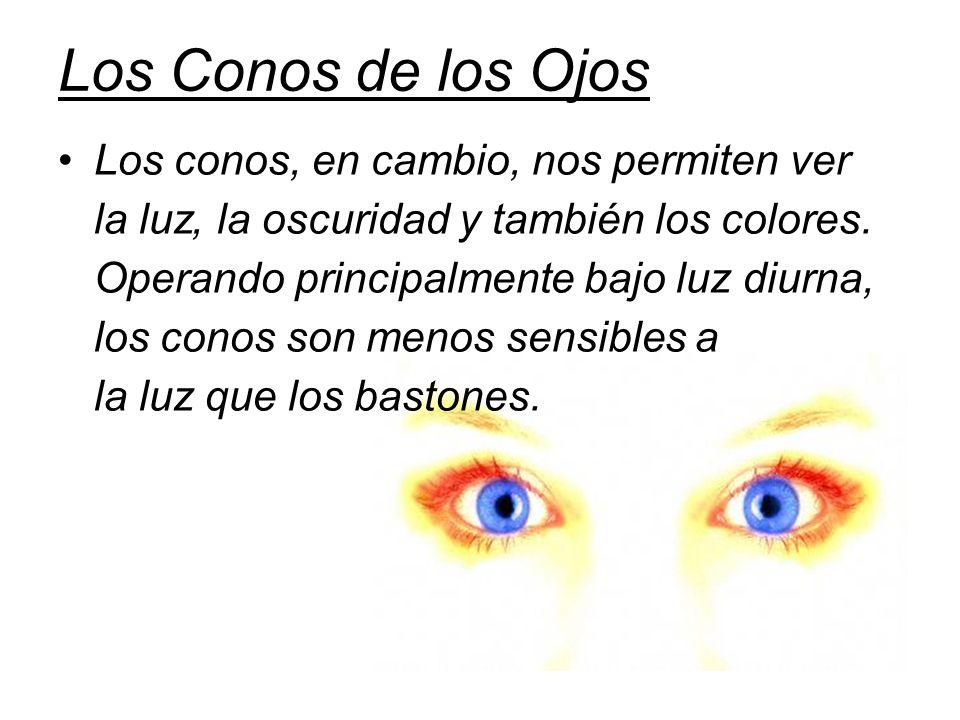 Los Conos de los Ojos