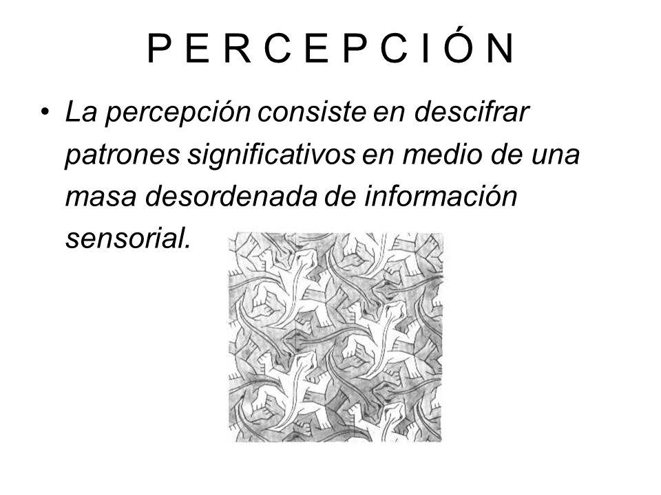 P E R C E P C I Ó N La percepción consiste en descifrar patrones significativos en medio de una masa desordenada de información sensorial.