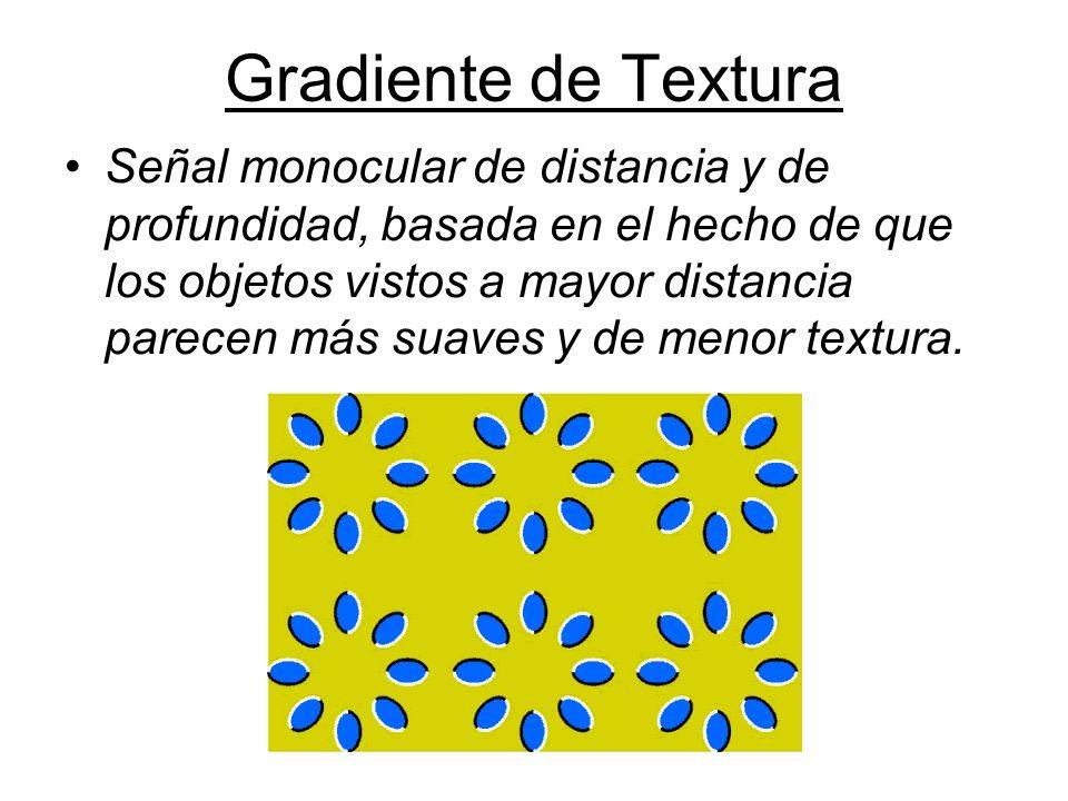 Gradiente de Textura