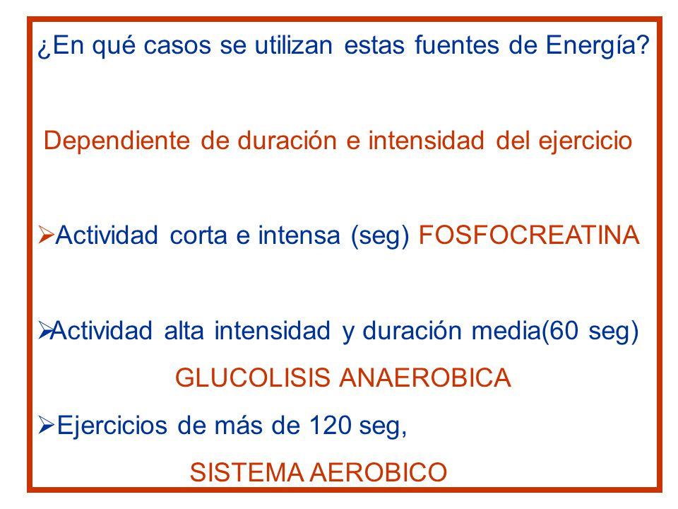 ¿En qué casos se utilizan estas fuentes de Energía
