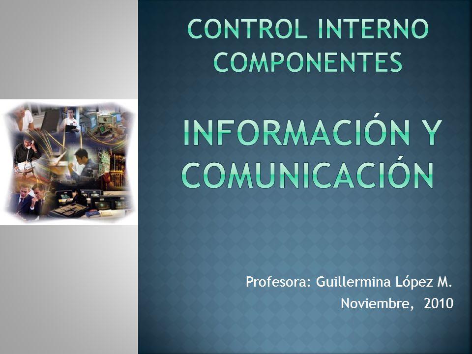 Control INTERNO componentes Información Y Comunicación