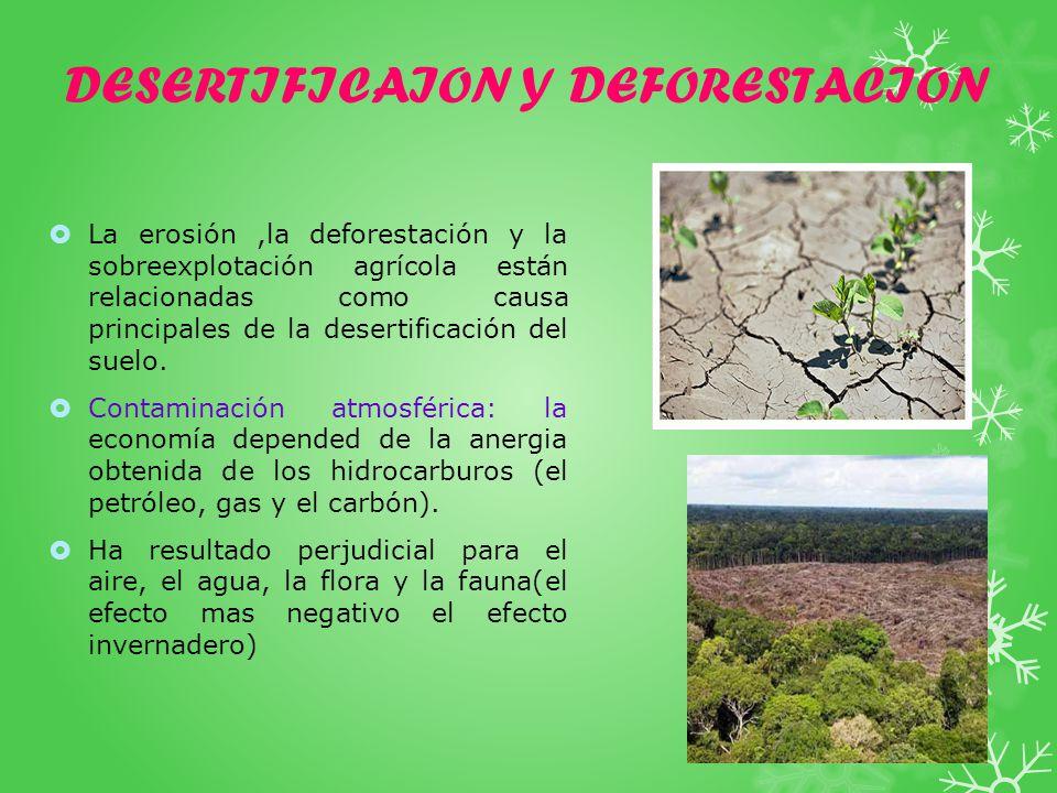DESERTIFICAION Y DEFORESTACION