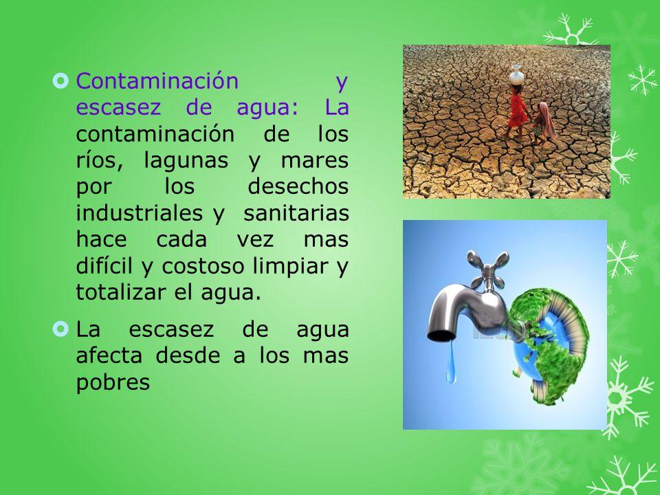 Contaminación y escasez de agua: La contaminación de los ríos, lagunas y mares por los desechos industriales y sanitarias hace cada vez mas difícil y costoso limpiar y totalizar el agua.