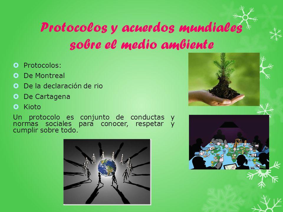 Protocolos y acuerdos mundiales sobre el medio ambiente