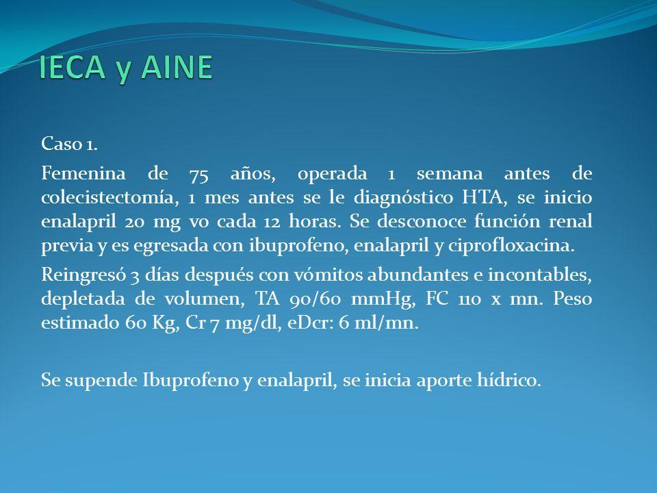 IECA y AINE Caso 1.