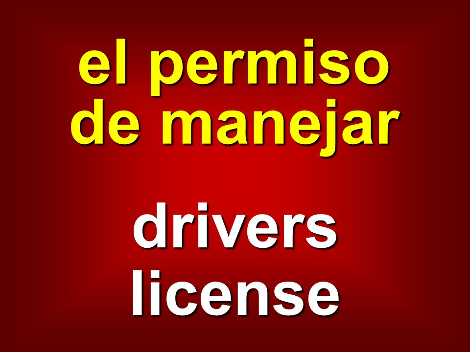 el permiso de manejar drivers license