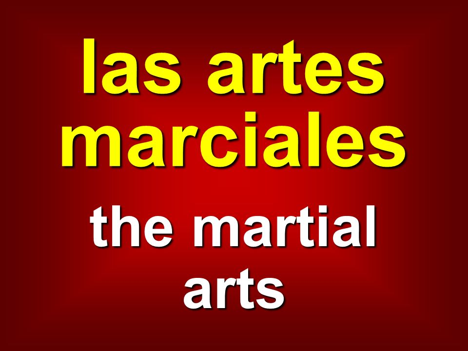 las artes marciales the martial arts