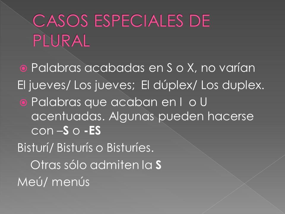 CASOS ESPECIALES DE PLURAL