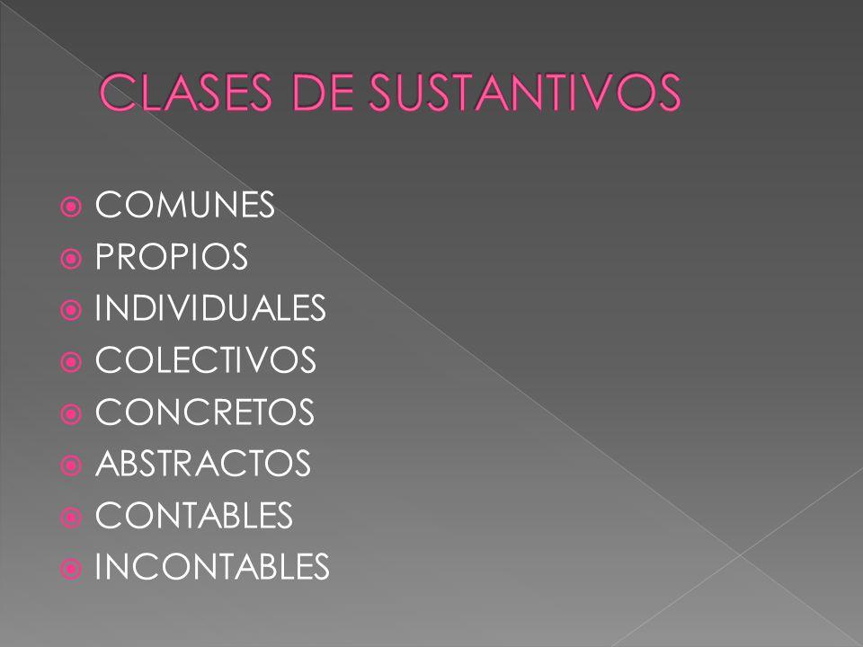 CLASES DE SUSTANTIVOS COMUNES PROPIOS INDIVIDUALES COLECTIVOS