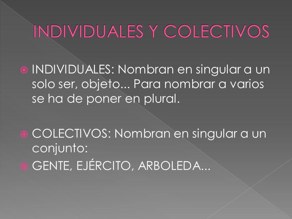 INDIVIDUALES Y COLECTIVOS