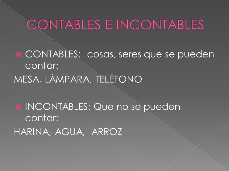 CONTABLES E INCONTABLES