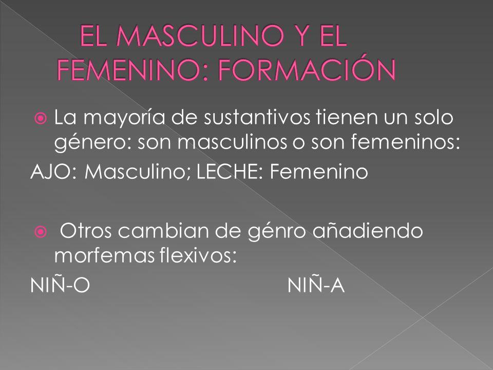 EL MASCULINO Y EL FEMENINO: FORMACIÓN
