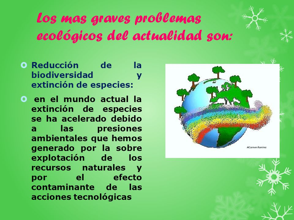 Los mas graves problemas ecológicos del actualidad son: