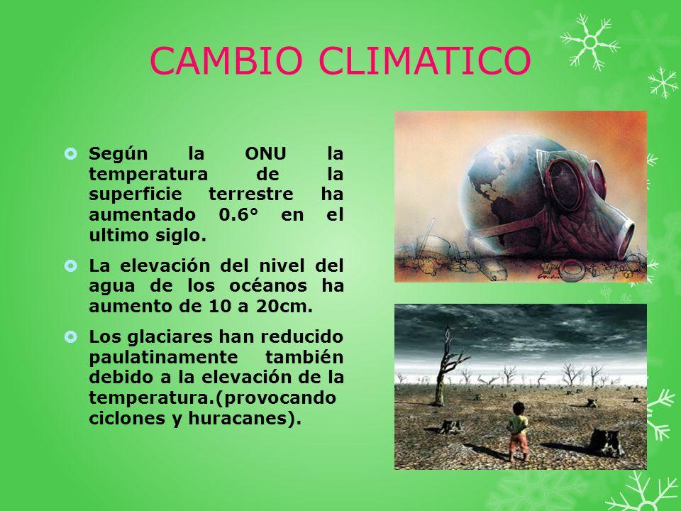 CAMBIO CLIMATICO Según la ONU la temperatura de la superficie terrestre ha aumentado 0.6° en el ultimo siglo.