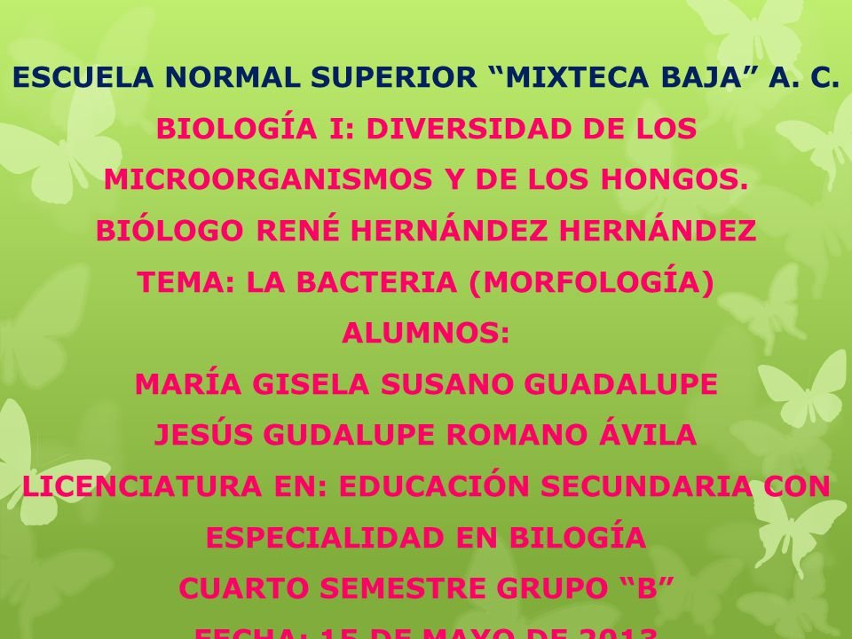 ESCUELA NORMAL SUPERIOR MIXTECA BAJA A. C.