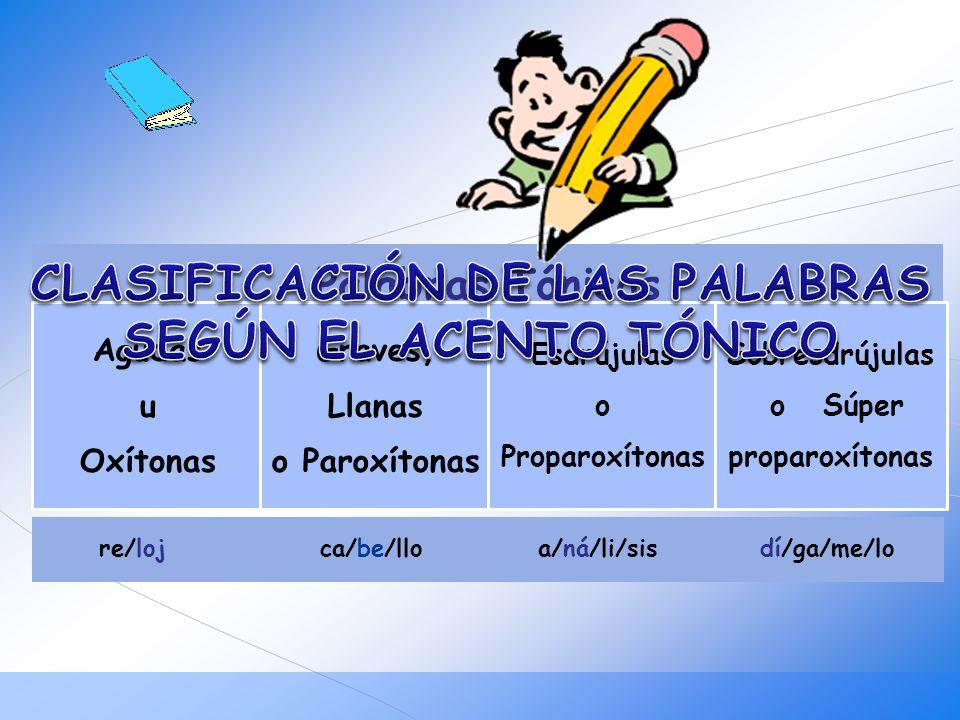 CLASIFICACIÓN DE LAS PALABRAS