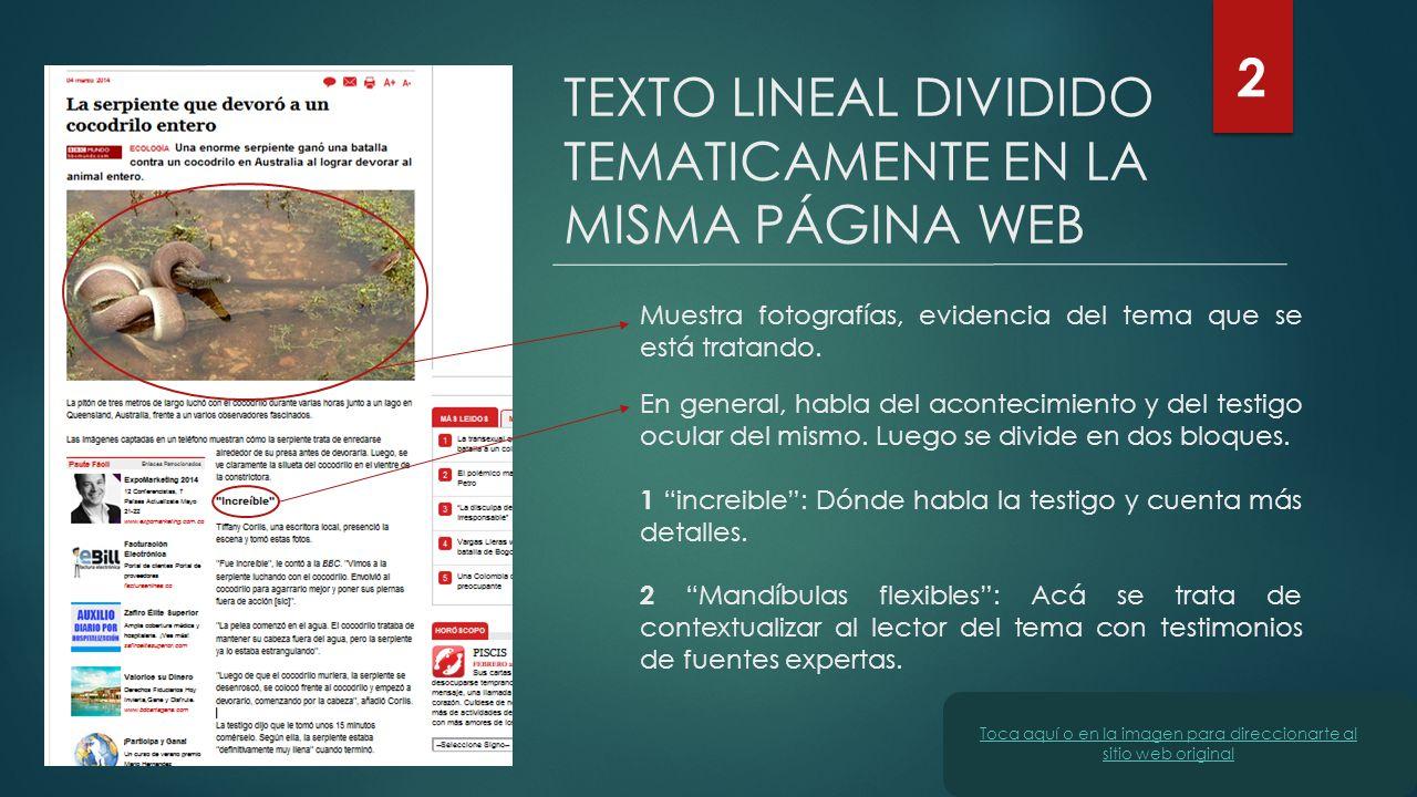 TEXTO LINEAL DIVIDIDO TEMATICAMENTE EN LA MISMA PÁGINA WEB