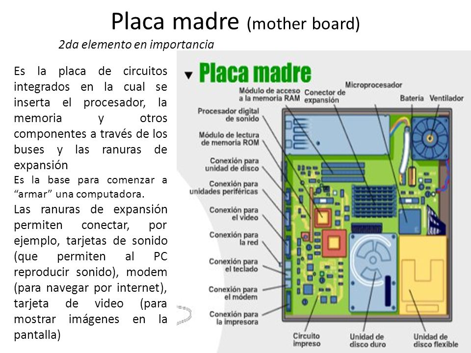 Placa madre (mother board)