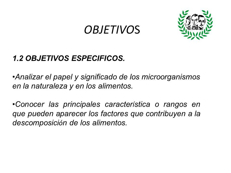 OBJETIVOS 1.2 OBJETIVOS ESPECIFICOS.