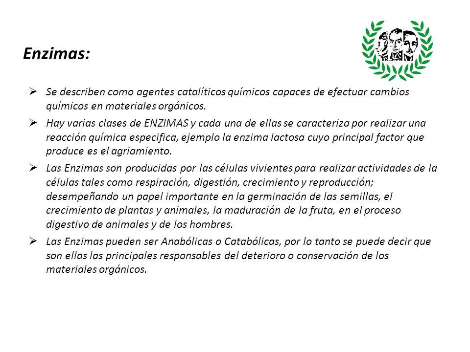 Enzimas: Se describen como agentes catalíticos químicos capaces de efectuar cambios químicos en materiales orgánicos.
