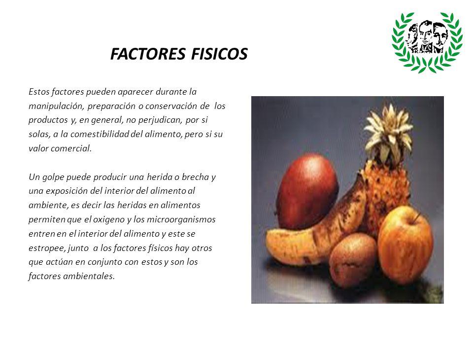 FACTORES FISICOS Estos factores pueden aparecer durante la