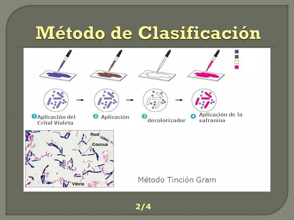 Método de Clasificación