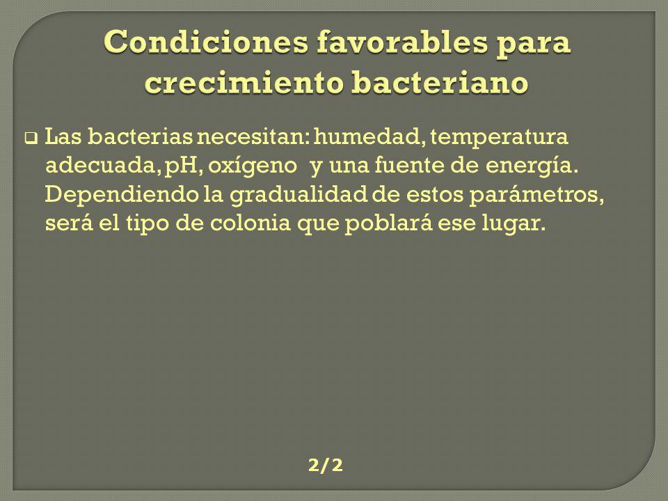 Condiciones favorables para crecimiento bacteriano