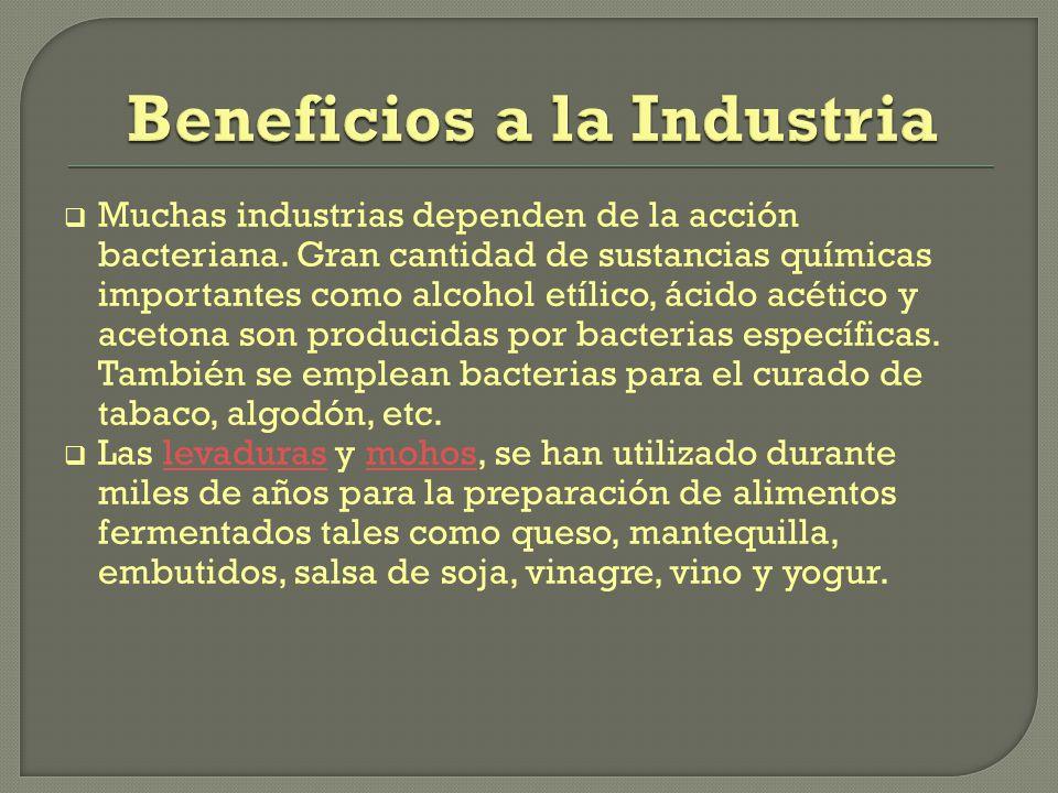 Beneficios a la Industria