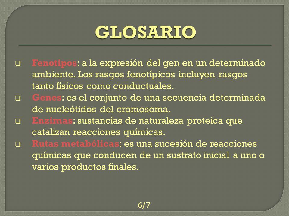 GLOSARIO Fenotipos: a la expresión del gen en un determinado ambiente. Los rasgos fenotípicos incluyen rasgos tanto físicos como conductuales.