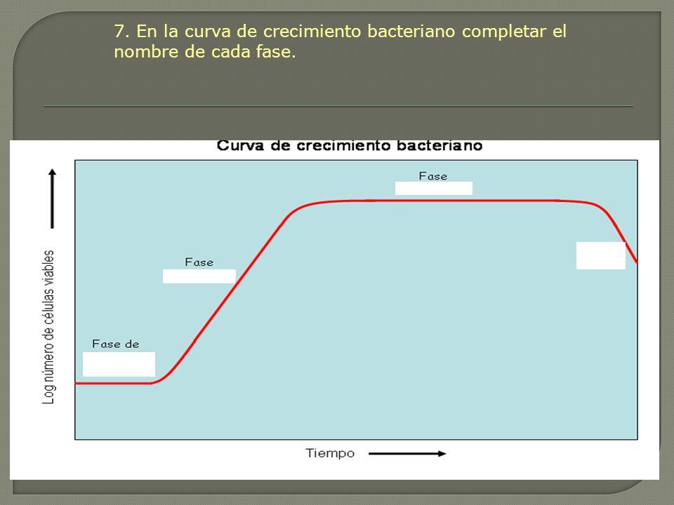 7. En la curva de crecimiento bacteriano completar el nombre de cada fase.