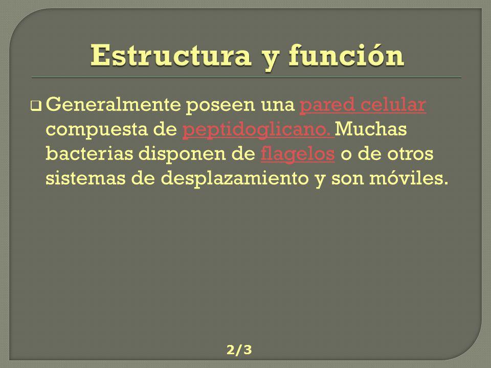 Estructura y función