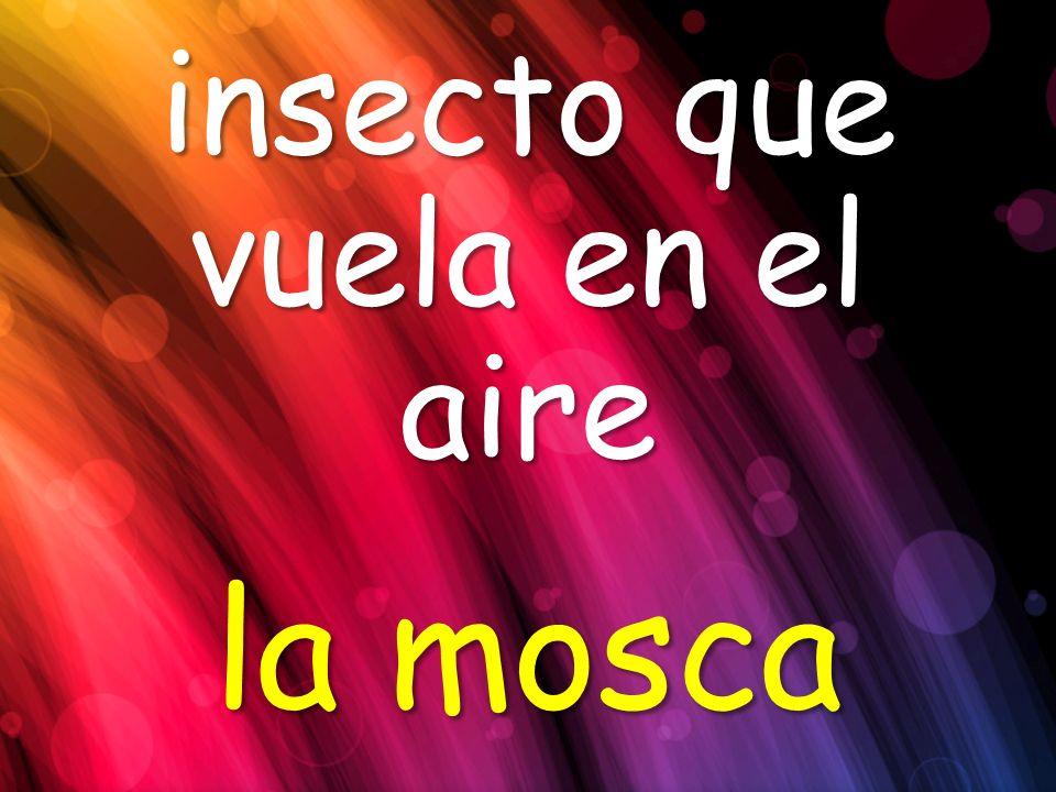insecto que vuela en el aire