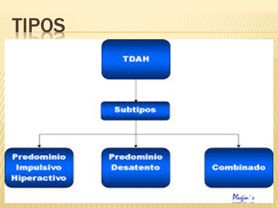 TIPOS