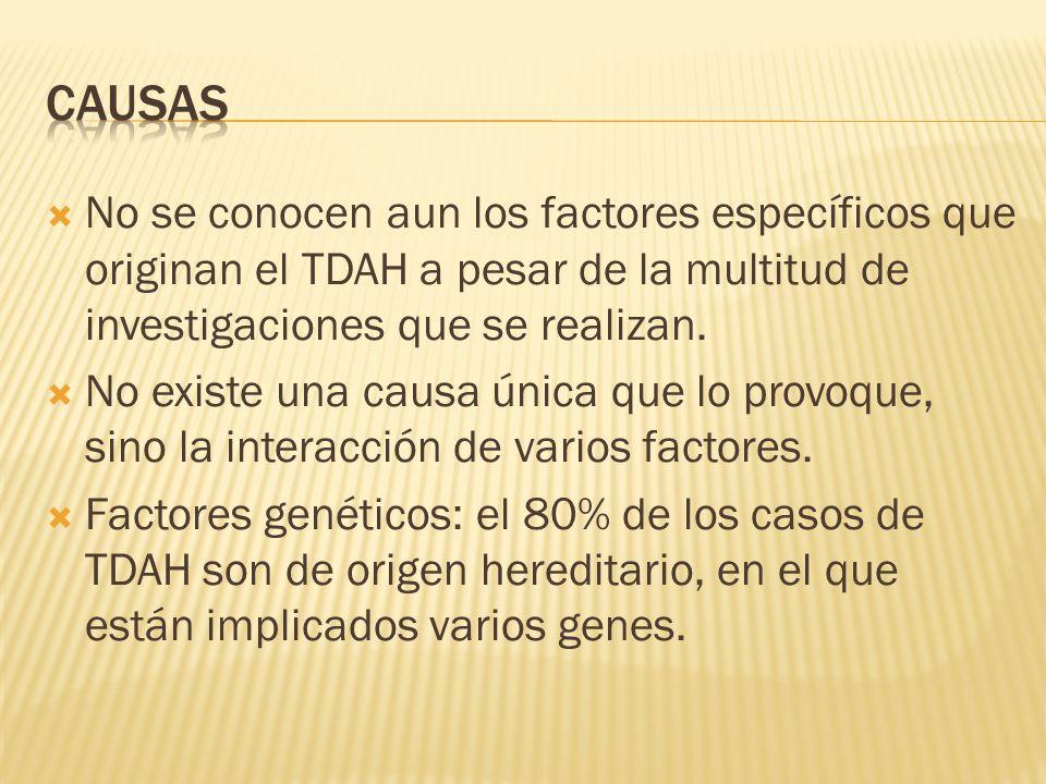 CAUSAS No se conocen aun los factores específicos que originan el TDAH a pesar de la multitud de investigaciones que se realizan.