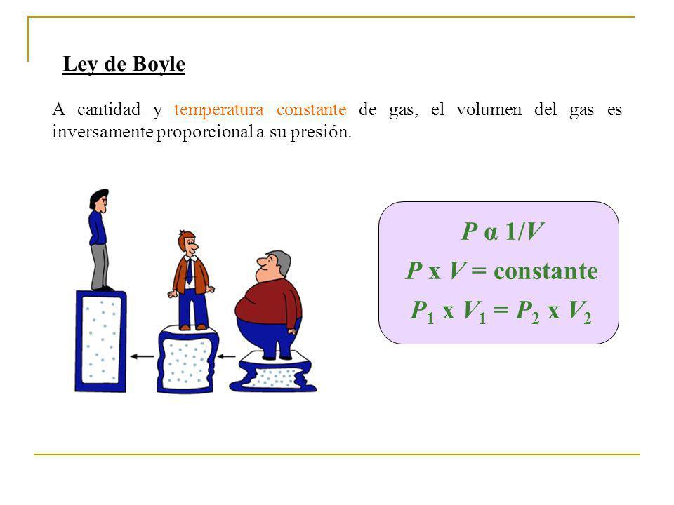P α 1/V P x V = constante P1 x V1 = P2 x V2