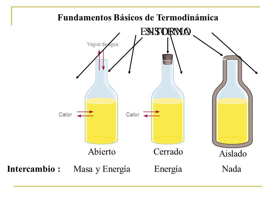 Fundamentos Básicos de Termodinámica
