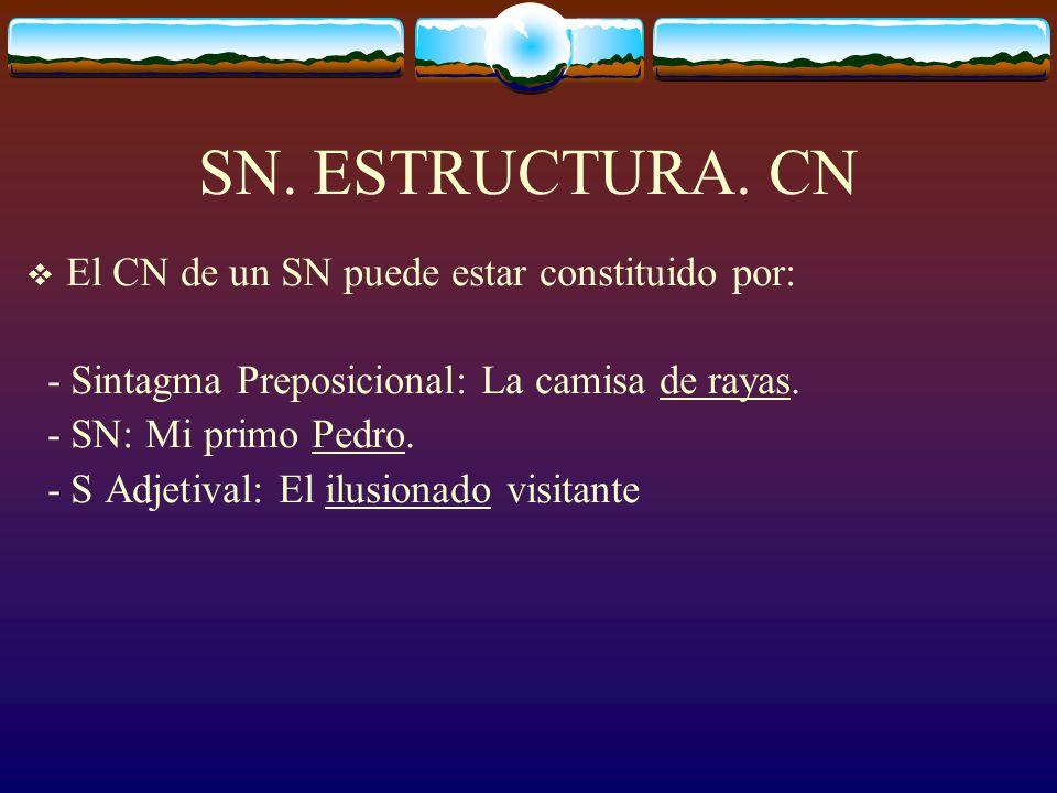 SN. ESTRUCTURA. CN El CN de un SN puede estar constituido por: