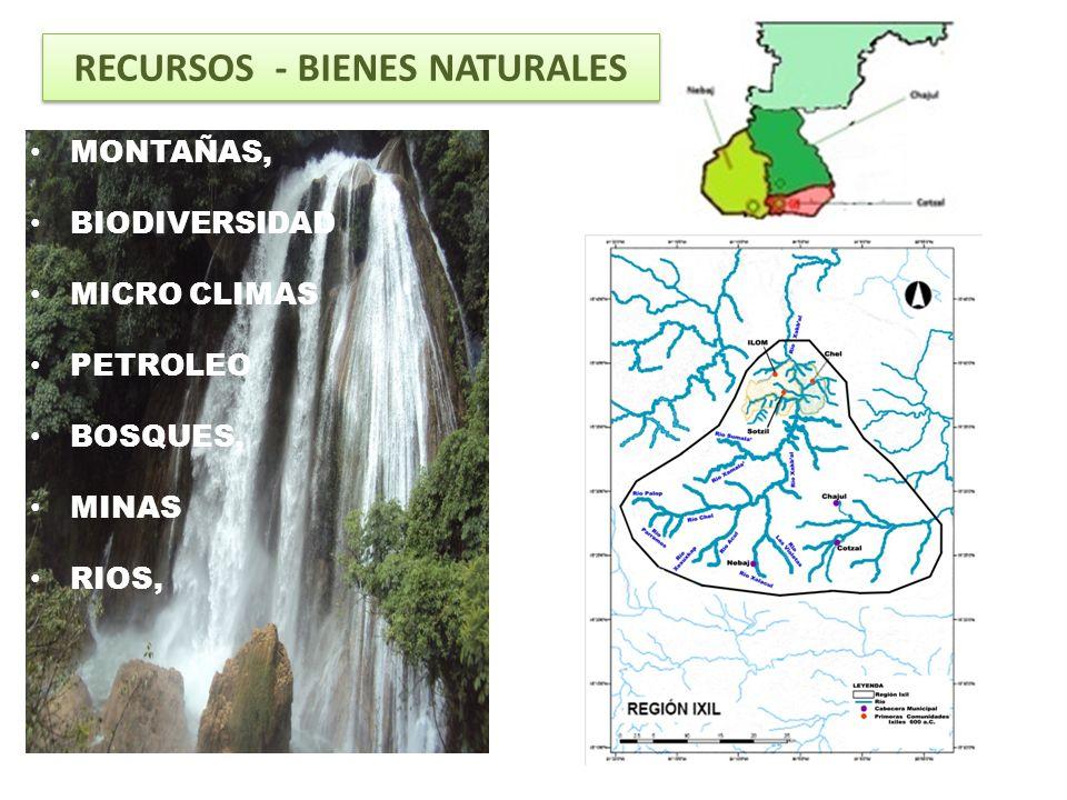 RECURSOS - BIENES NATURALES
