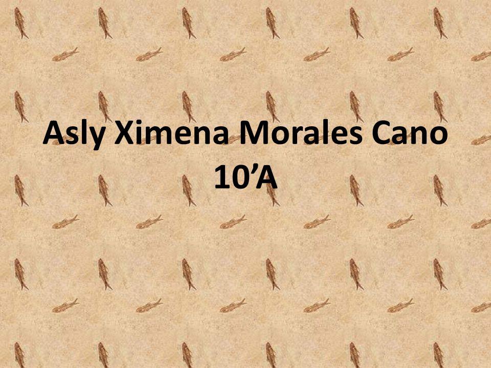 Asly Ximena Morales Cano 10'A
