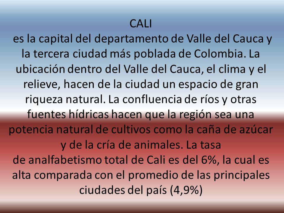 CALI es la capital del departamento de Valle del Cauca y la tercera ciudad más poblada de Colombia.