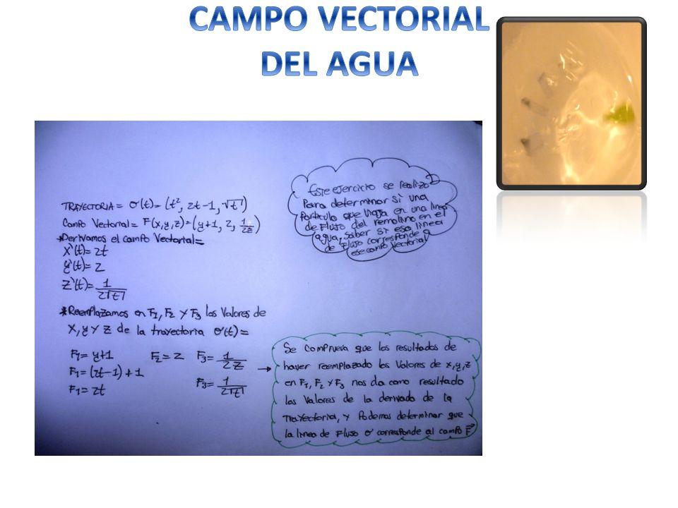 CAMPO VECTORIAL DEL AGUA