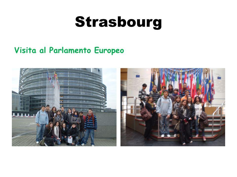 Strasbourg Visita al Parlamento Europeo