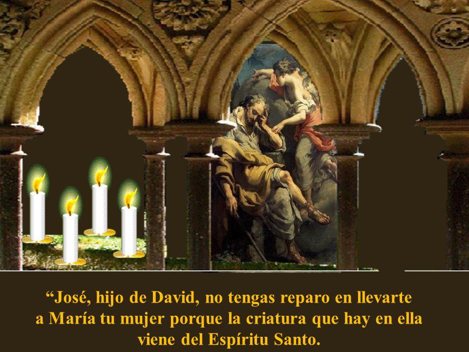 José, hijo de David, no tengas reparo en llevarte