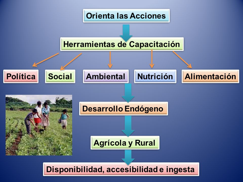 Orienta las Acciones Herramientas de Capacitación. Política. Social. Ambiental. Nutrición. Alimentación.