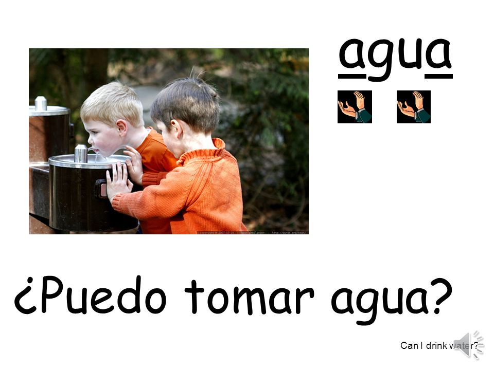 agua ¿Puedo tomar agua Can I drink water