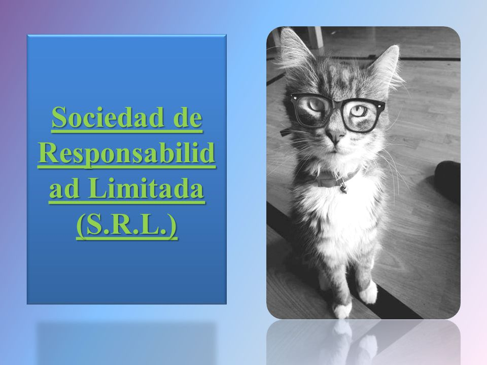 Sociedad de Responsabilidad Limitada (S.R.L.)