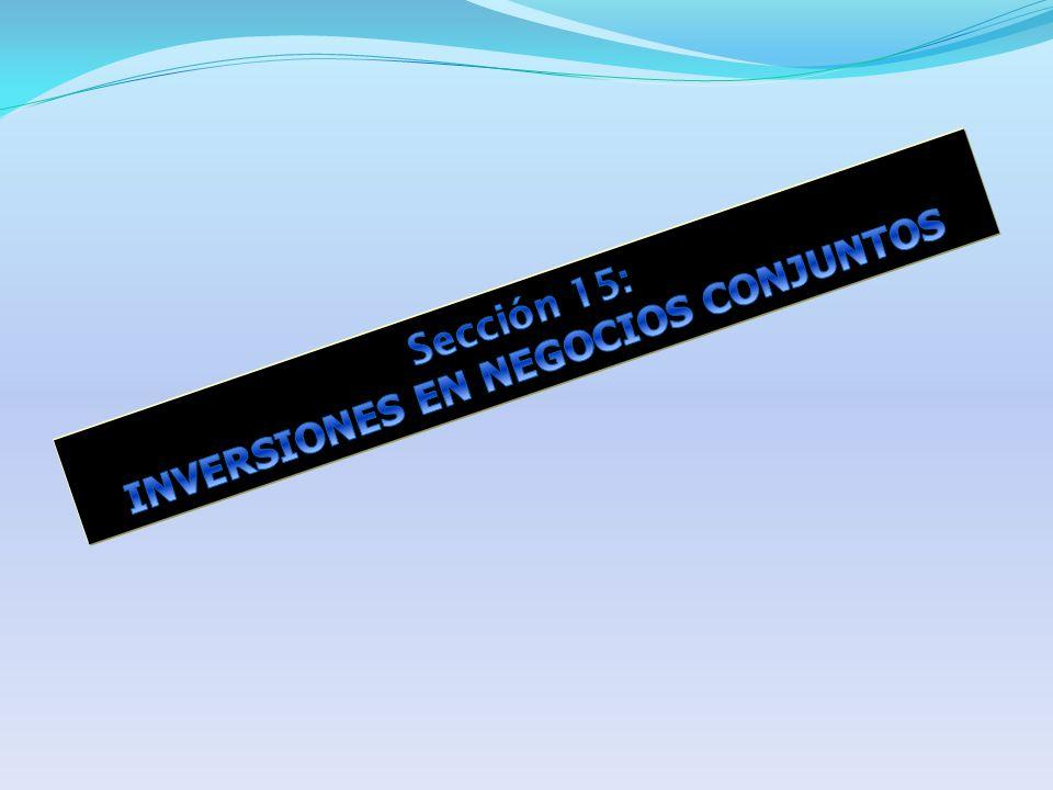 Sección 15: INVERSIONES EN NEGOCIOS CONJUNTOS