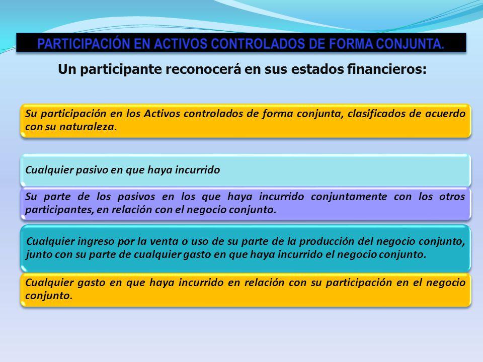 Participación en activos Controlados de forma Conjunta.