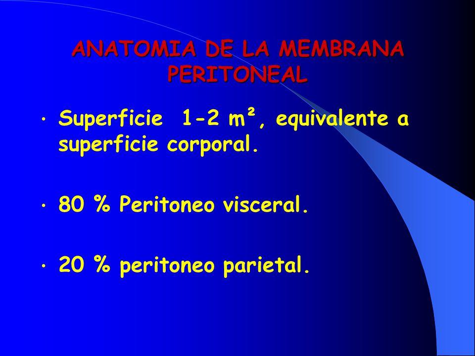 ANATOMIA DE LA MEMBRANA PERITONEAL